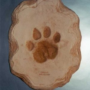 Cougar Footprint Cast Replica Model
