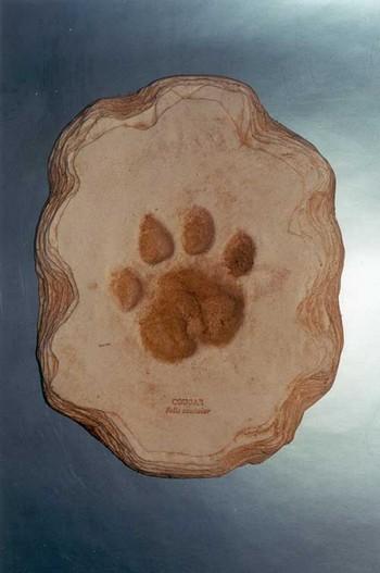 Cougar Footprint Cast Replica Model