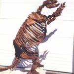 Euubv-VmCTE-vxiVC-Harlans_Ground_Sloth_Skeleton_Cast_Replicas_Models_Glossotherium