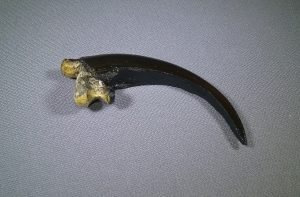 Golden Eagle Claw Replica