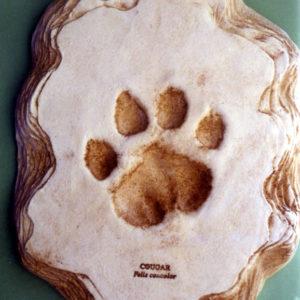 cougar footprint cast replica