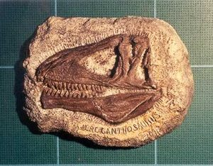 Acrocanthosaurus Dinosaur Plaque