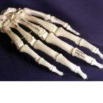 modern-human-hand-hs004-CWVQb-EgRou-tuurM
