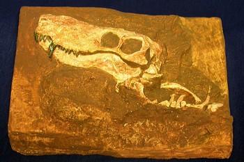 Gorgonopsial Skull Plaque