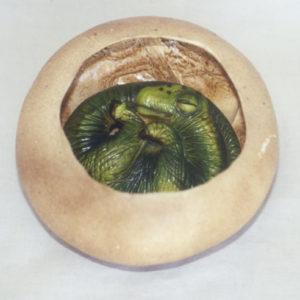titantosaurus egg embryo fossil